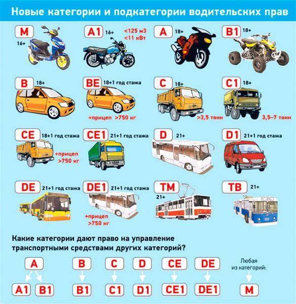 Категория c: - автомобили, за исключением автомобилей категории d